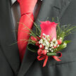 ROYAL ESSENCE BUTTONHOLE